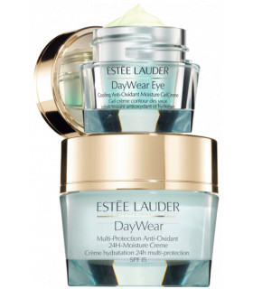 ESTEE LAUDER DAYWEAR FACE & EYE GIFT SET